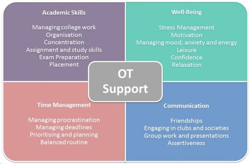 Areas the OTs can focus on with students