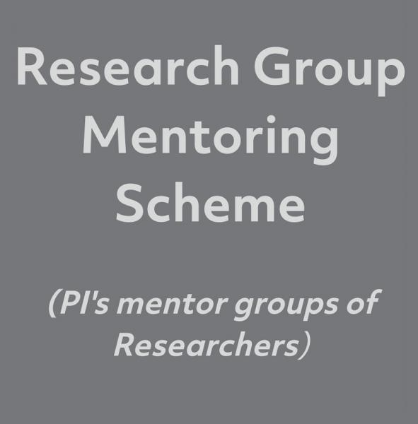 Research Mentoring