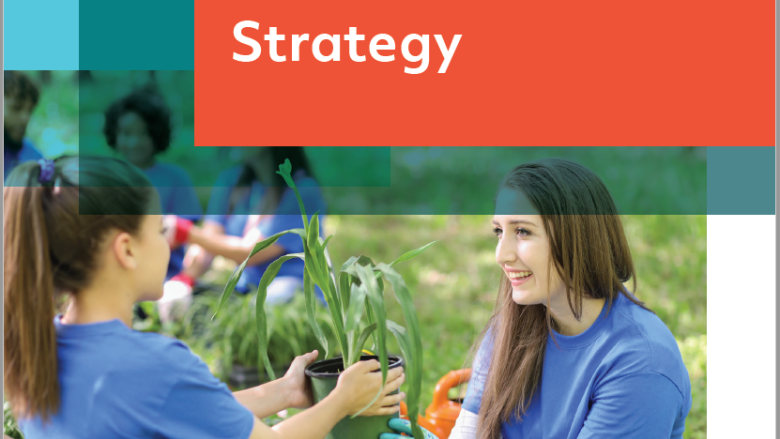 DCU Volunteer Strategy 2020