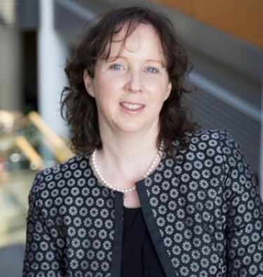 Professor Lisa Looney apoointed the new Vice President for Academic Affairs (Registrar) at DCU