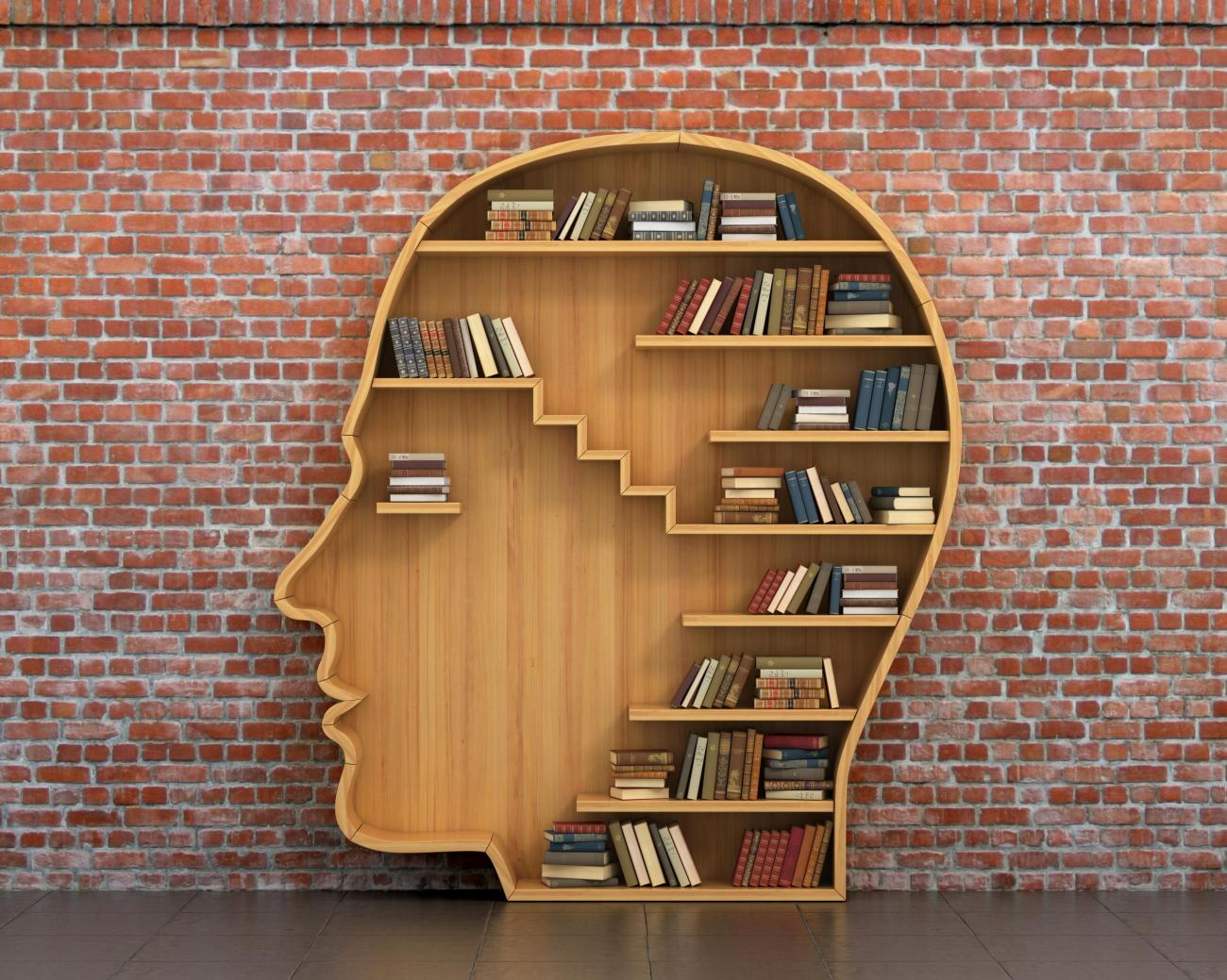 Bookshelf in shape of human head
