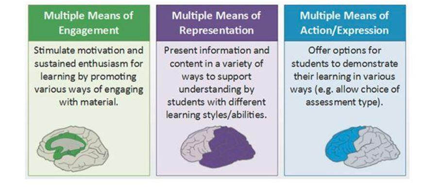 UDL guidelines on multiple ways to learn, teach and assess